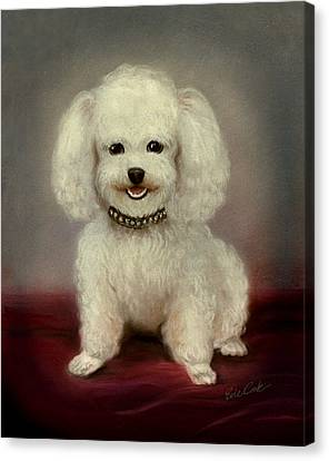 Cutest Poodle Canvas Print by Evie Cook