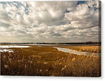 Rhode Island Marshes 1 Canvas Print