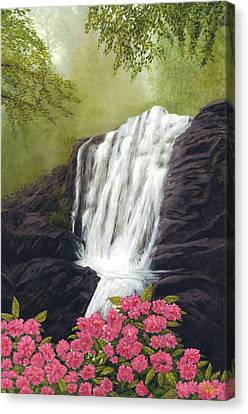 Rhodedendron Falls Canvas Print by Rick Fitzsimons