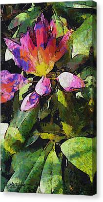 Rhododendron Explosion Canvas Print