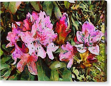 Rhododendrons One Canvas Print by Spyder Webb