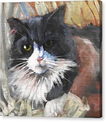 RIA Canvas Print by Ken Thomas