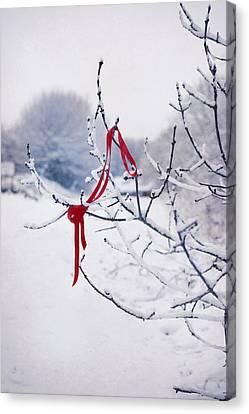 Ribbon In Tree Canvas Print by Amanda Elwell