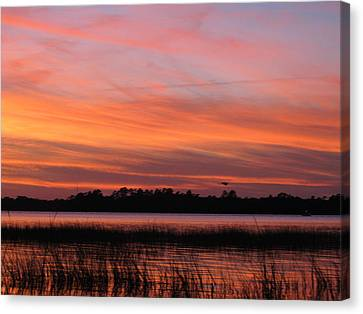 Canvas Print featuring the photograph Ribbons Delight by Joetta Beauford