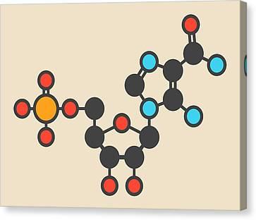 Ribonucleotide Molecule Canvas Print by Molekuul