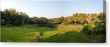 Rice Fields In Front Of Villas, Four Canvas Print