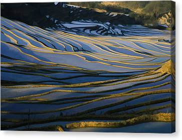 Chinese Peasant Canvas Print - Rice Terraces Of Yuanyang 1 by Lanjee Chee