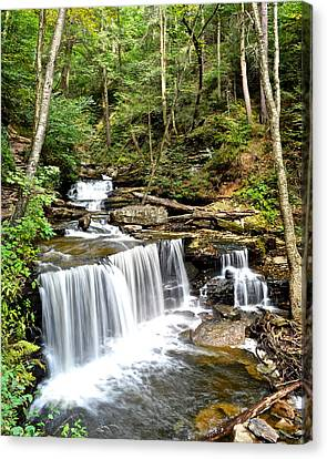 Ricketts Glen Delaware Falls Canvas Print by Frozen in Time Fine Art Photography
