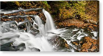Ricketts Glen - On Top Of The Fall Canvas Print