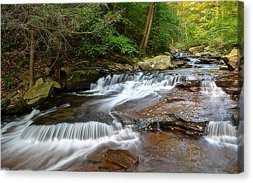 Marvelous View Canvas Print - Ricketts Glen by Frozen in Time Fine Art Photography