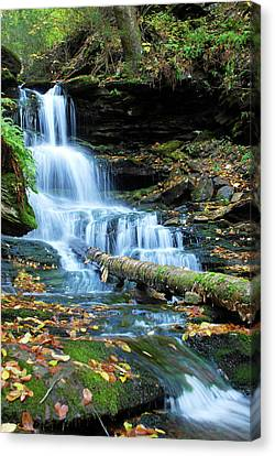 Ricketts Glen Hidden Waterfall Canvas Print
