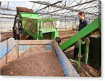 Local Food Canvas Print - Riddling Compost by Ashley Cooper