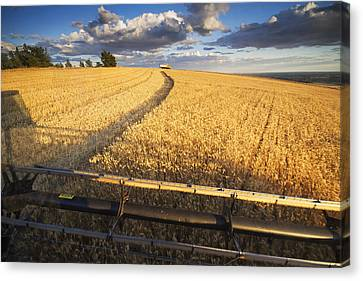 Harvester Canvas Print - Ride Along by Mark Kiver