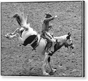 Ride Em Cowboy Canvas Print by Stephen Stookey