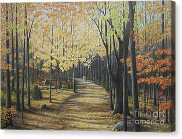 Rideau Walking Trail Canvas Print