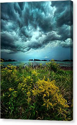 Riders On The Storm Canvas Print by Phil Koch
