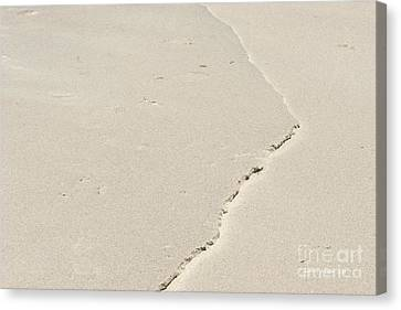 Ridge In The Sand At Big Sur Canvas Print by Artist and Photographer Laura Wrede