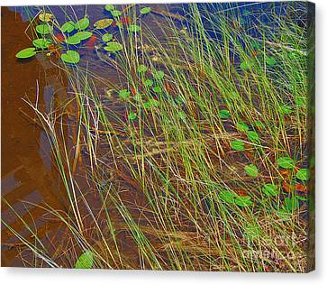 Ridges Illusion Canvas Print