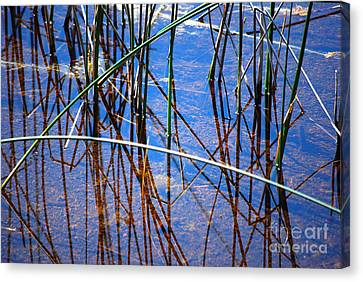 Ridges Reflection Canvas Print