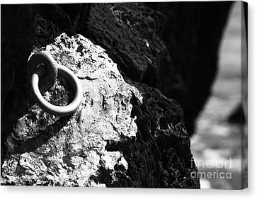 Ring And Rock Canvas Print by Anne Gilbert