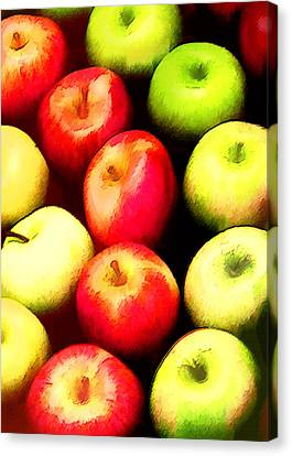 Ring Of Apples Canvas Print by Elaine Plesser