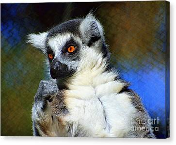 Canvas Print featuring the photograph Ring-tailed Lemur by Lisa L Silva