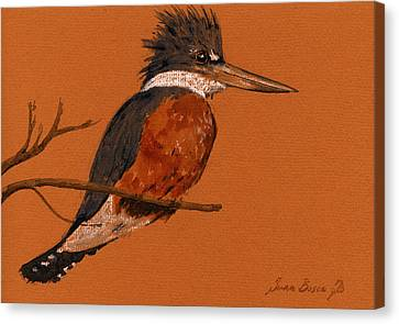 Natur Canvas Print - Ringed Kingfisher Bird by Juan  Bosco