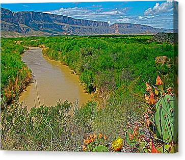 Rio Grande East Of Santa Elena Canyon In  Big Bend National Park-texas Canvas Print by Ruth Hager