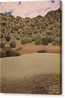 Rio Grande New Mexico Canvas Print by Elizabeth Sullivan