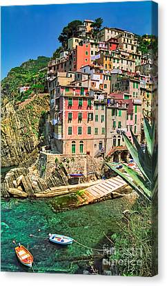 Riomaggiore Canvas Print by Nigel Fletcher-Jones