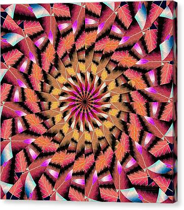 Rippled Source Kaleidoscope Canvas Print by Derek Gedney
