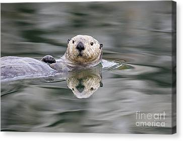 Ripples And Reflections Canvas Print by Tim Grams