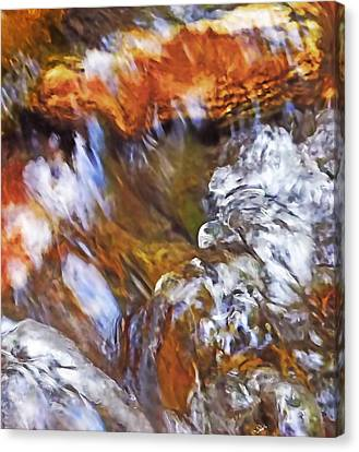 Ripples In The Stream Canvas Print by Terril Heilman