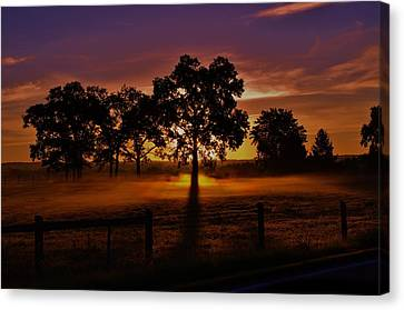 Rise Canvas Print by Robert Geary