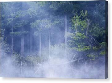 Barbara Smith Canvas Print - Rising Mist by Barbara Smith