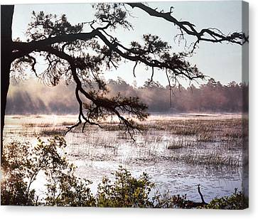 Rising Mist On Batsto Lake Canvas Print
