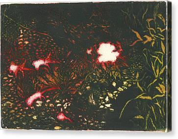 Rising Primrose Canvas Print by Taylor Lee Bisbee