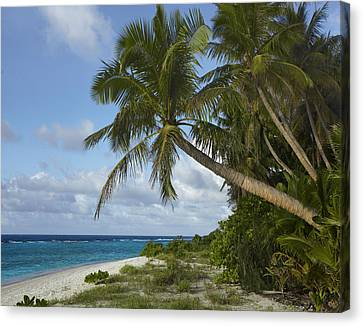 Ritidian Beach In Guam Canvas Print