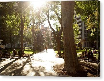 Rittenhouse In The Sun Canvas Print by Christopher Woods