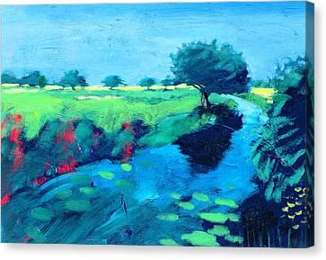 River  Canvas Print by Paul Powis