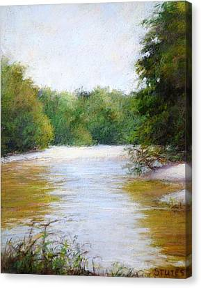 River And Trees Canvas Print by Nancy Stutes