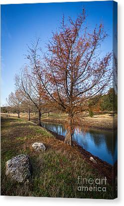 River And Winter Trees Canvas Print