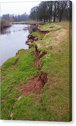 River Bank Slumping Canvas Print by Mark Williamson
