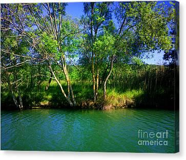 River Beauty Canvas Print by Hanza Turgul
