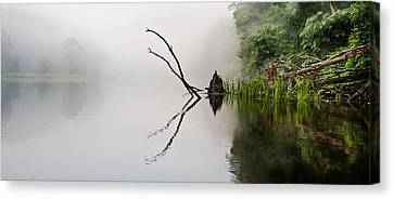 Canvas Print featuring the photograph River Crabs by Tom Cameron