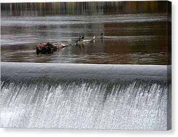 River Dam Canvas Print by Mark Ayzenberg