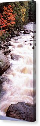 River Flowing Through A Forest, Ausable Canvas Print