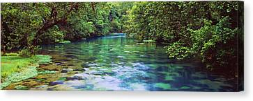 River Flowing Through A Forest, Big Canvas Print