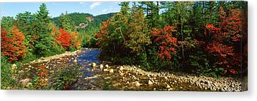 River Flowing Through A Forest, Swift Canvas Print by Panoramic Images