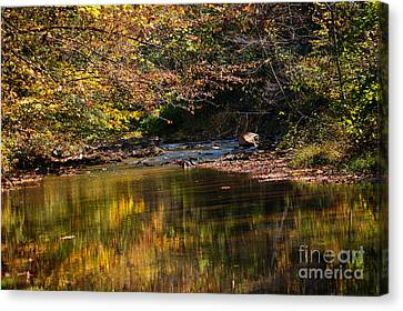Canvas Print featuring the photograph River In Autumn by Lisa L Silva